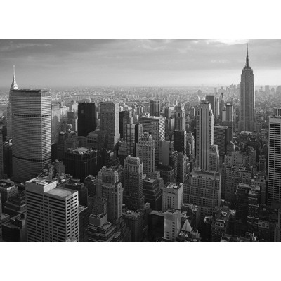 Fotomural NEW YORK NY16