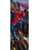 Fotomural Marvel SPIDERMAN 1-437