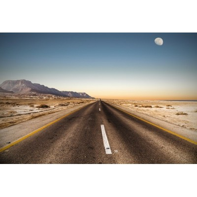 Fotomural Estrada Deserta FPR002