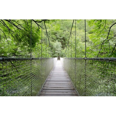 Fotomural paisaje puente FPR015