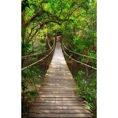 Fotomural Puente en la Selva FPR018