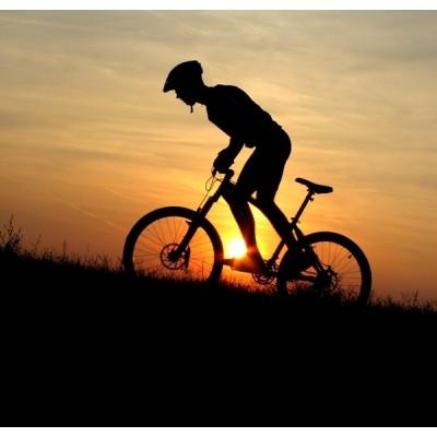 Fotomural Mountain Bike FDE002