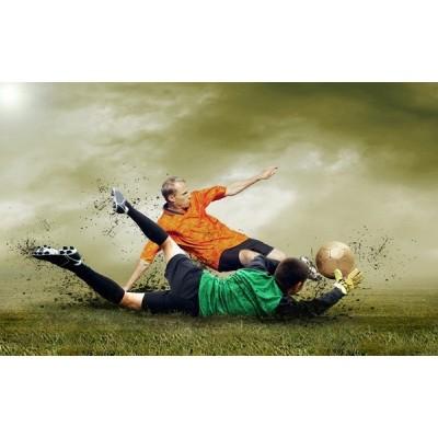 Fotomural Futbol FDE004