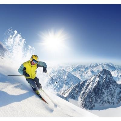 Fotomural Esquiar FDE011