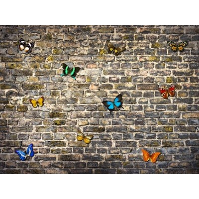 Fotomural BUTTERFLIES ON BRICKS FT-1435