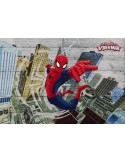 Fotomural Marvel SPIDERMAN CONCRETE 8-467