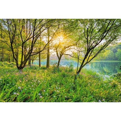 Fotomural SPRING LAKE