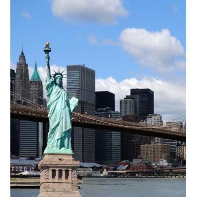 Fotomural NEW YORK FTL-1613