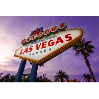 Fotomural Las Vegas FLF003