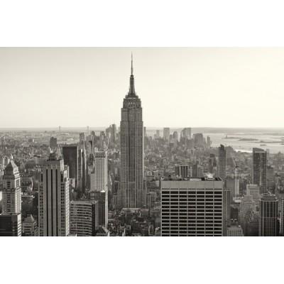 Fotomural New York City FLF008