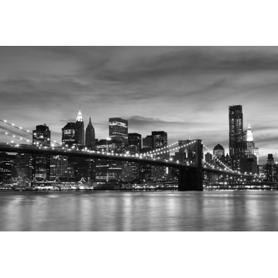 Fotomural Manhattan FLF016