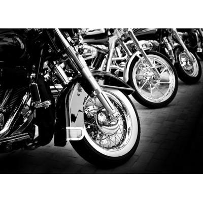 Fotomural Motor Sport FMO006