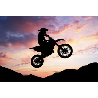 Fotomural Motor Sport FMO010