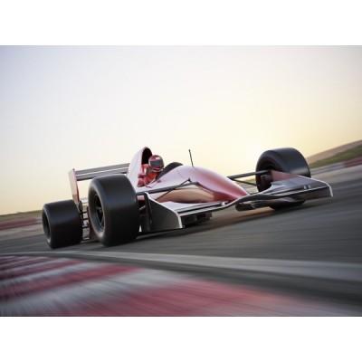 Fotomural Motor Sport FMO012