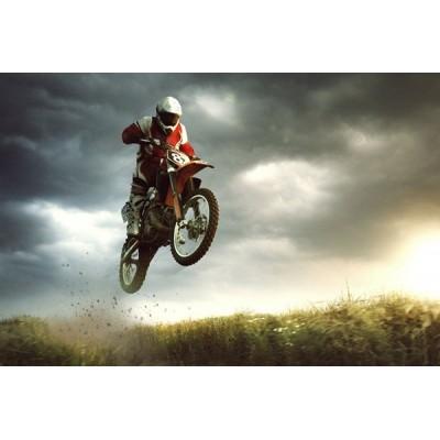 Fotomural Motor Sport FMO017