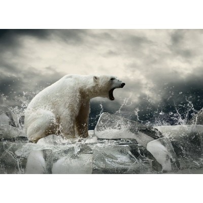 Fotomural Urso Polar FAN038