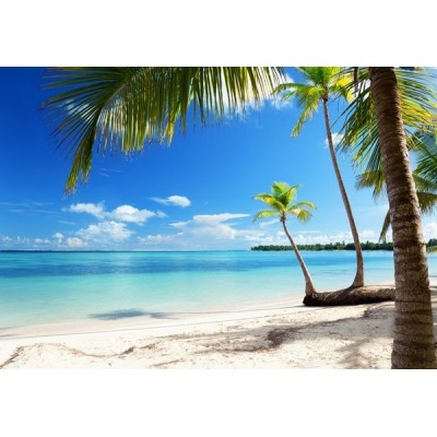 Fotomural CARIBBEAN SEA