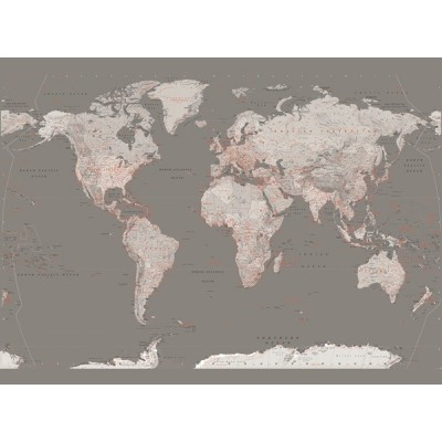 Fotomural W4PL SILVER MAP 001