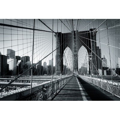 Fotomural NEW YORK A016