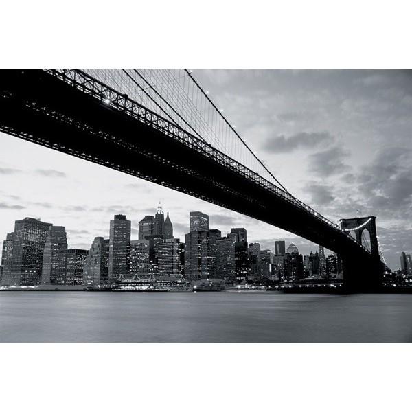 Fotomural NEW YORK B007