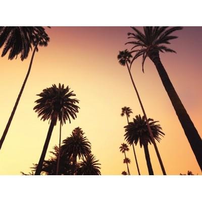 Fotomural W4P CALIFORNIA A001