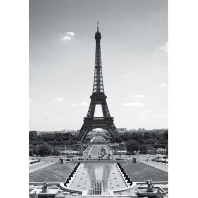 Fotomural PARIS TP001