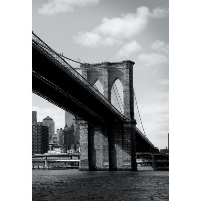 Fotomural NEW YORK TP008