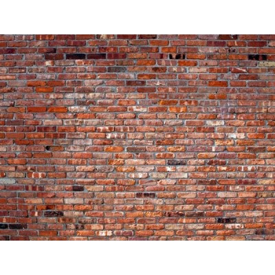 Fotomural RED BRICKS FT-1449