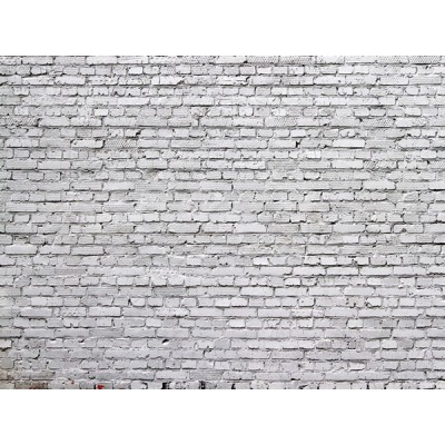 Fotomural WHITE BRICKS FT-1442