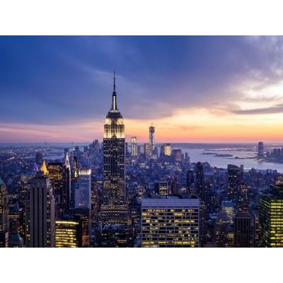 Fotomural NY FT-1453