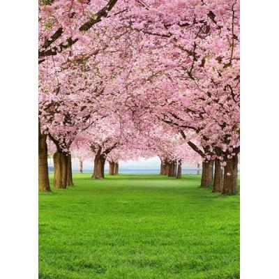 Fotomural CHERRY TREES