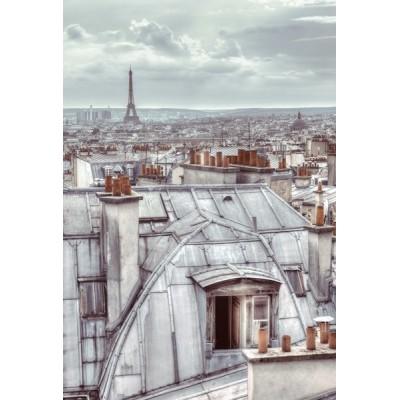 Fotomural W2P PARIS 003