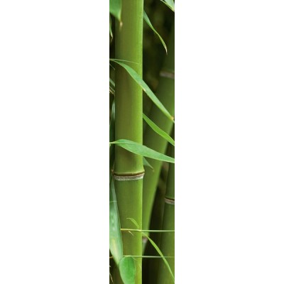 Wall Stripes Bamboo 74503
