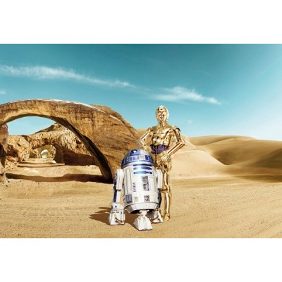 Fotomural STAR WARS LOST DROIDS 8-484