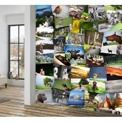 Fotomural Collage VILLAGER JIM