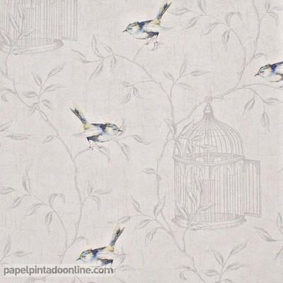 Paper pintat CURIOSITY CRY_6545_60_65