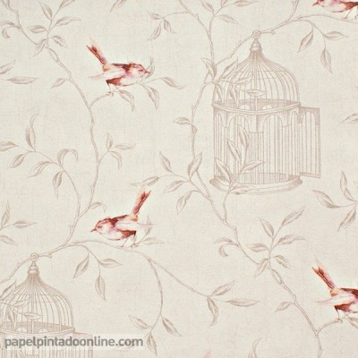 Paper pintat CURIOSITY CRY_6545_40_40