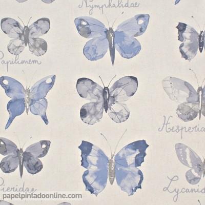 Paper pintat CURIOSITY CRY_6547_60_19