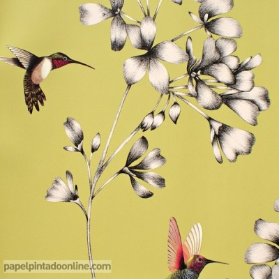 Paper pintat AMAZILIA 111061