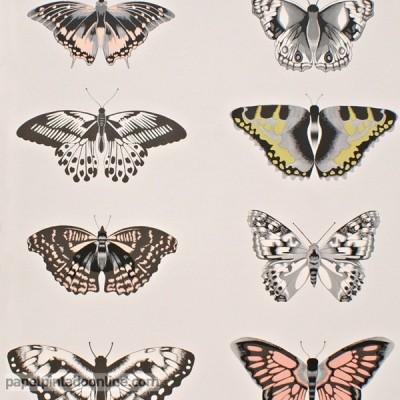 Paper pintat AMAZILIA 111077