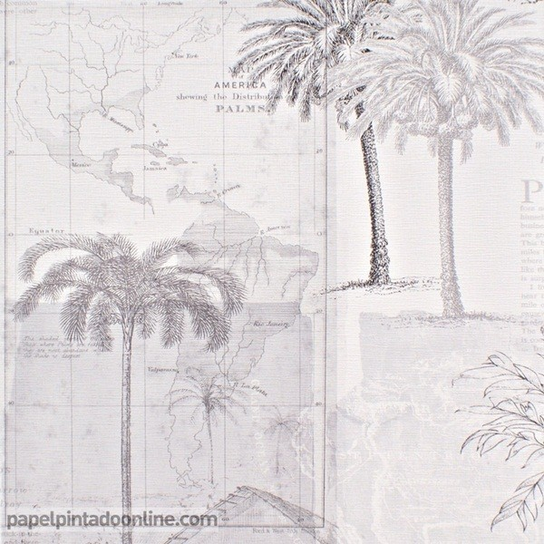 Papel pintado PASSPORT PSP_6659_90_90