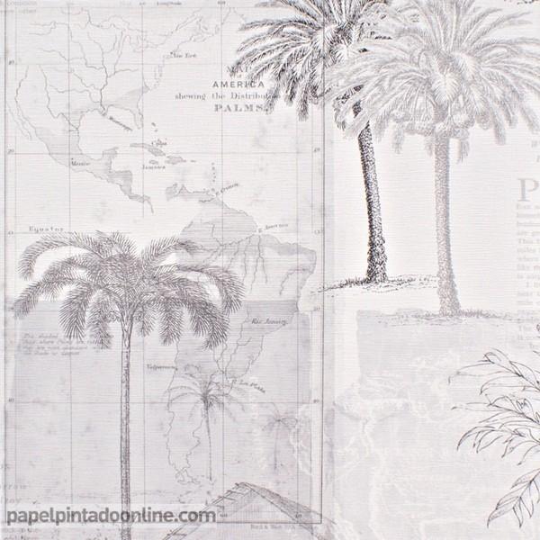 Paper pintat PASSPORT PSP_6659_90_90