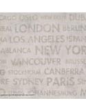 Paper pintat PASSPORT PSP_6656_10_13