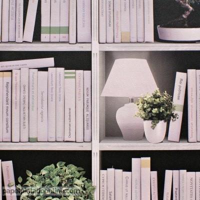 Papel Pintado Libros Y Estanterías Dibujos Con Bibliotecas Fictícias