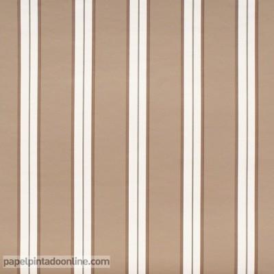 Paper pintat AMBOISE CBR_1540_11_06