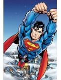 Fotomural W2PL SUPERMAN 004