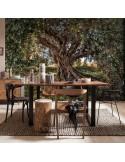 Fotomural OLIVE TREE