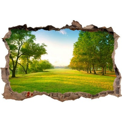 Vinil Decorativo 3D NATUREZA V3DA004