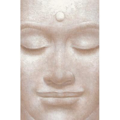 Fotomural SMILING BUDDHA 654