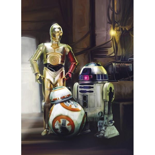 Fotomural STAR WARS THREE DROIDS 4-447